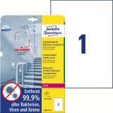 Avery Zweckform Folienetikett antimikrobiell A4 transparent