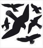 HERMA Fensterwarnvogel schwarz