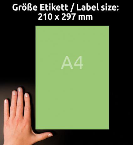 Avery Zweckform Universaletikett 210 x 297 mm grün-3