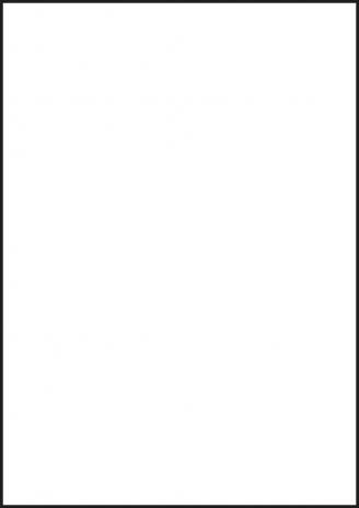 Avery Zweckform Laserfolie-3