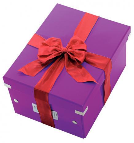 Leitz Aufbewahrungsbox Click & Store 28,1 x 20 x 36,9 cm (A4) weiß-6